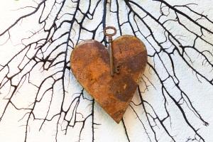 heart-915562